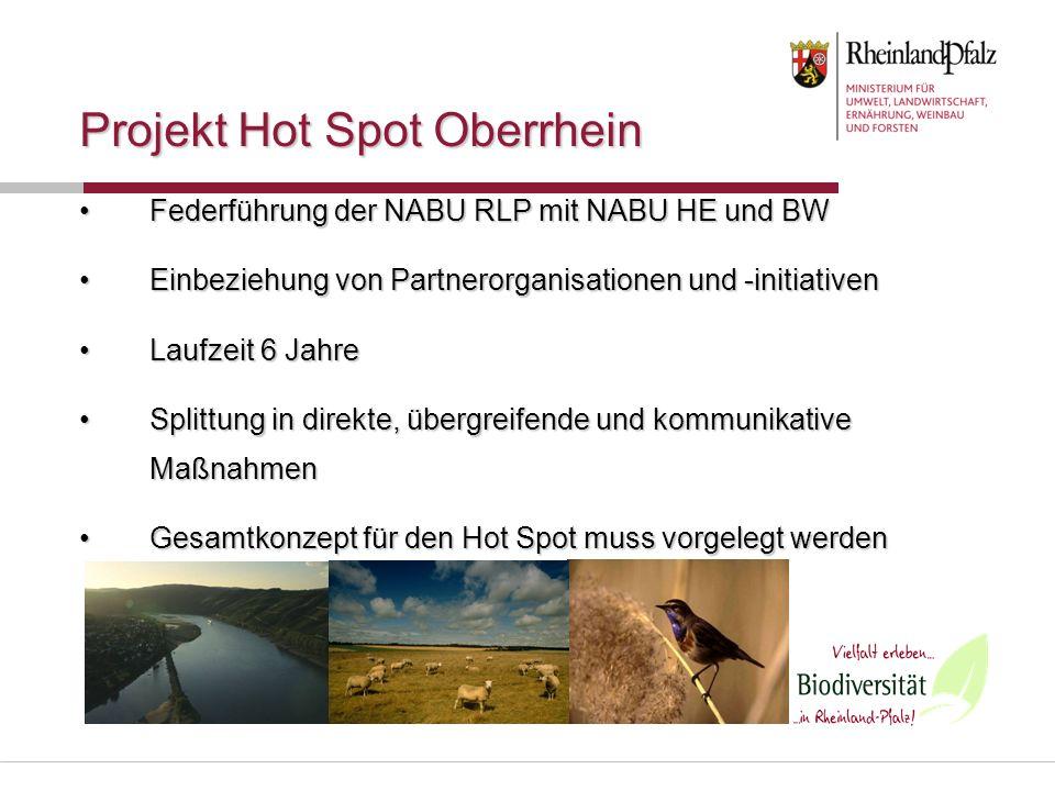 Projekt Hot Spot Oberrhein