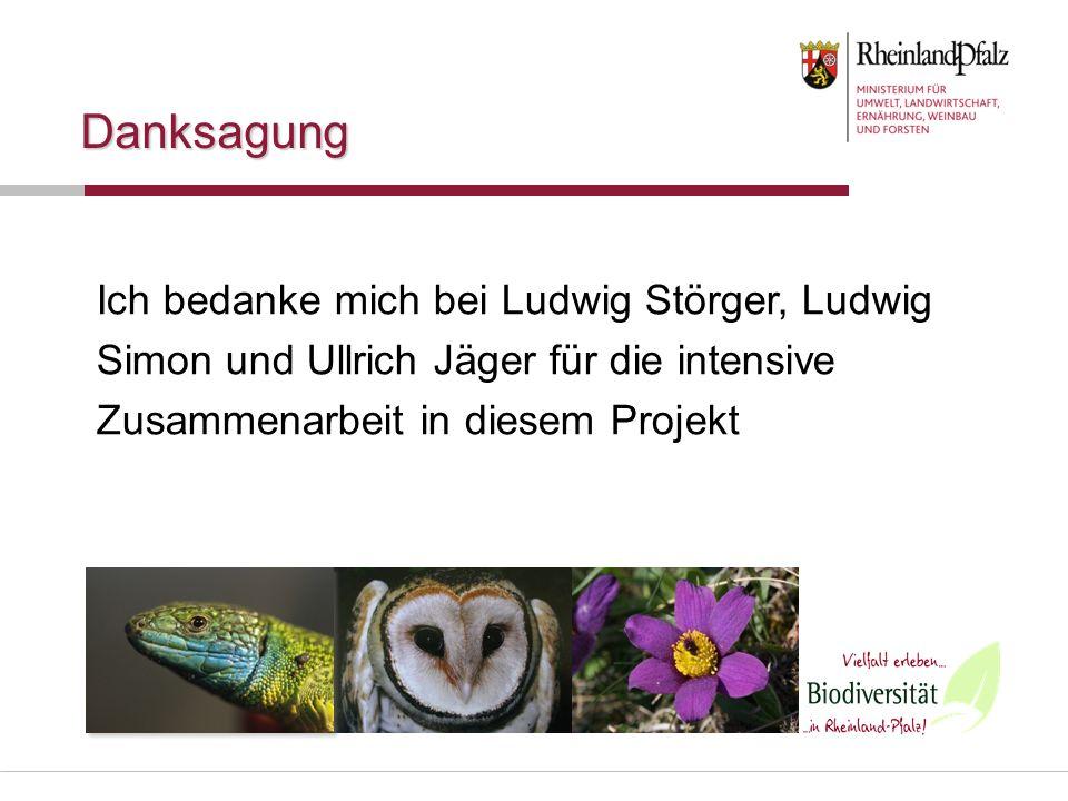Danksagung Ich bedanke mich bei Ludwig Störger, Ludwig Simon und Ullrich Jäger für die intensive Zusammenarbeit in diesem Projekt.