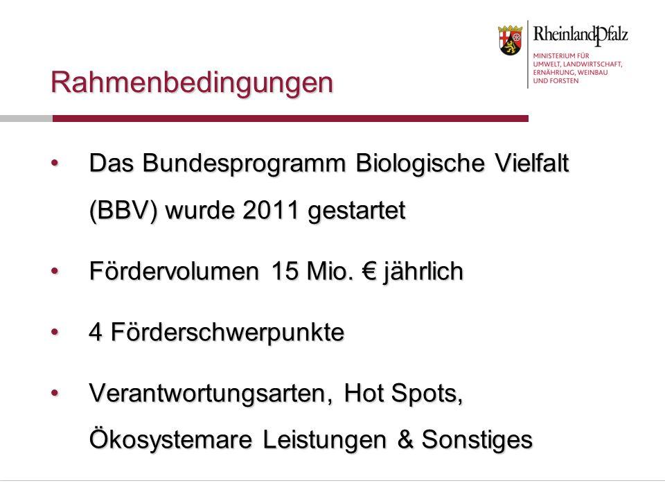 Rahmenbedingungen Das Bundesprogramm Biologische Vielfalt (BBV) wurde 2011 gestartet. Fördervolumen 15 Mio. € jährlich.