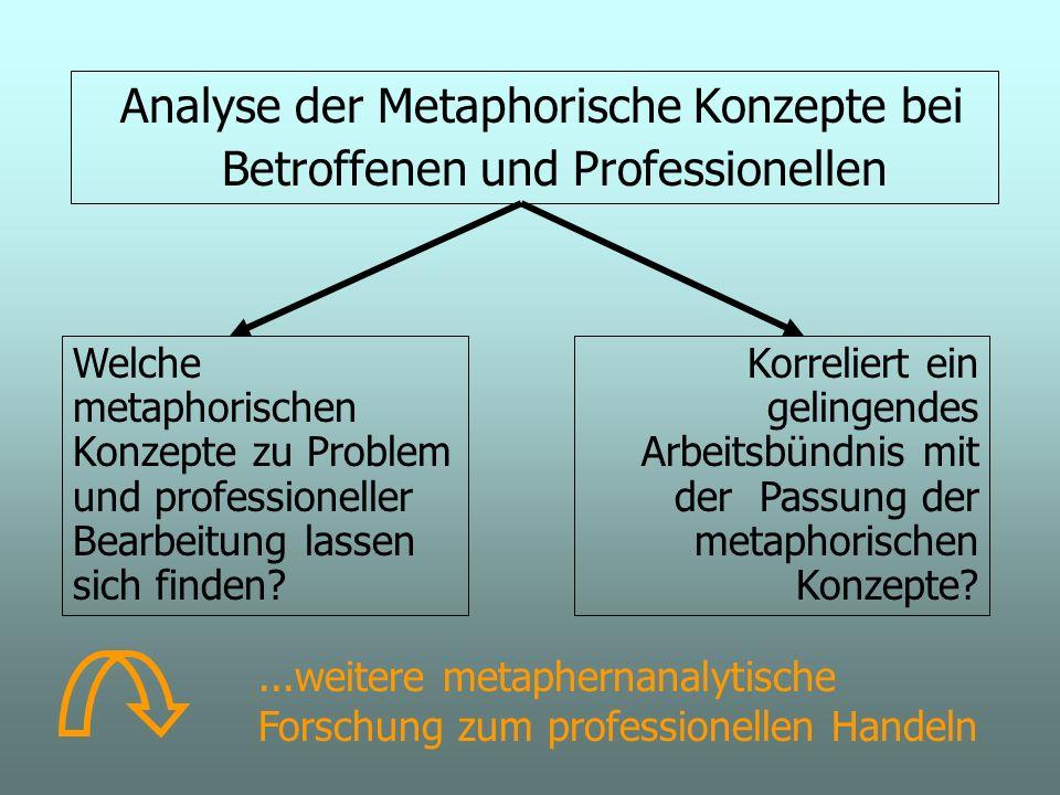 Analyse der Metaphorische Konzepte bei Betroffenen und Professionellen