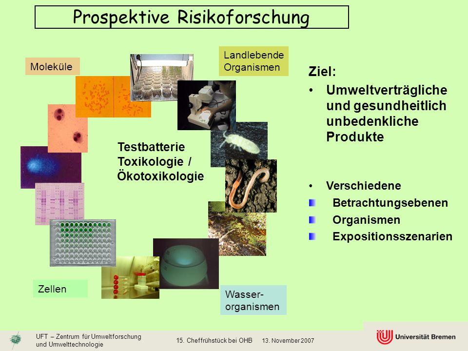 Prospektive Risikoforschung