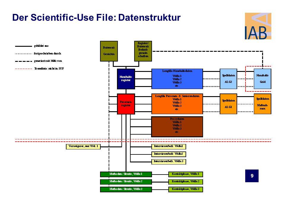 Der Scientific-Use File: Datenstruktur