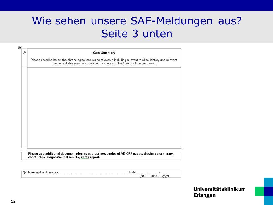 Wie sehen unsere SAE-Meldungen aus Seite 3 unten
