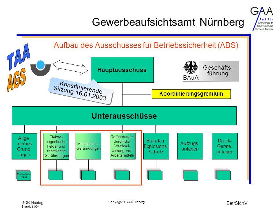 Aufbau des Ausschusses für Betriebssicherheit (ABS)