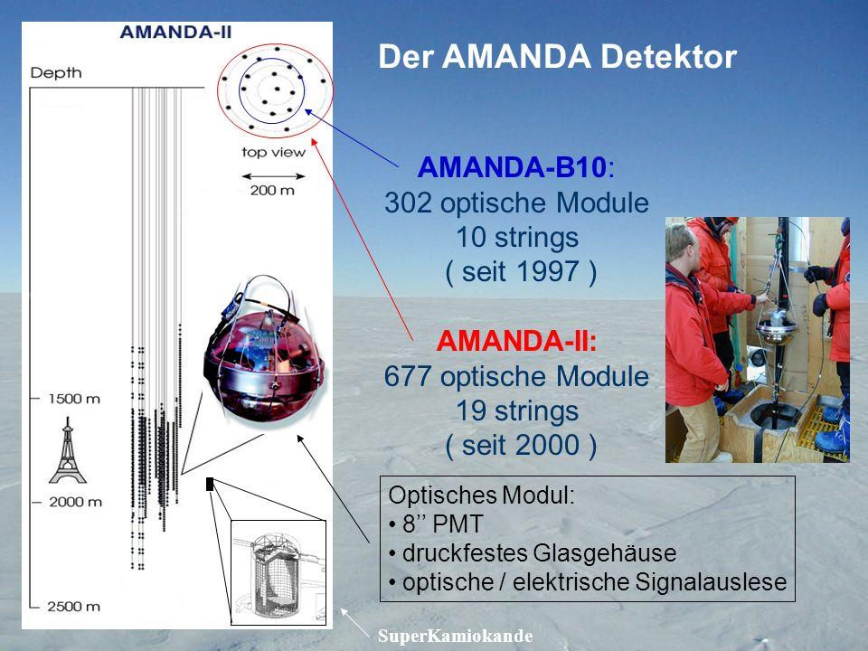Der AMANDA Detektor AMANDA-B10: 302 optische Module 10 strings