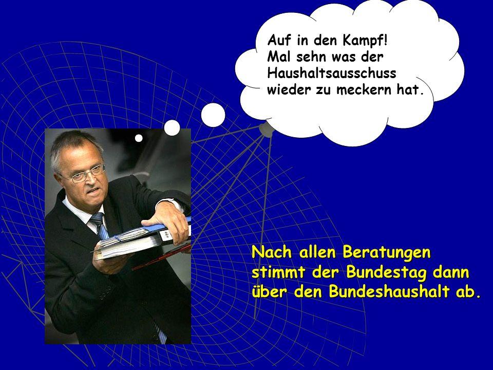stimmt der Bundestag dann über den Bundeshaushalt ab.