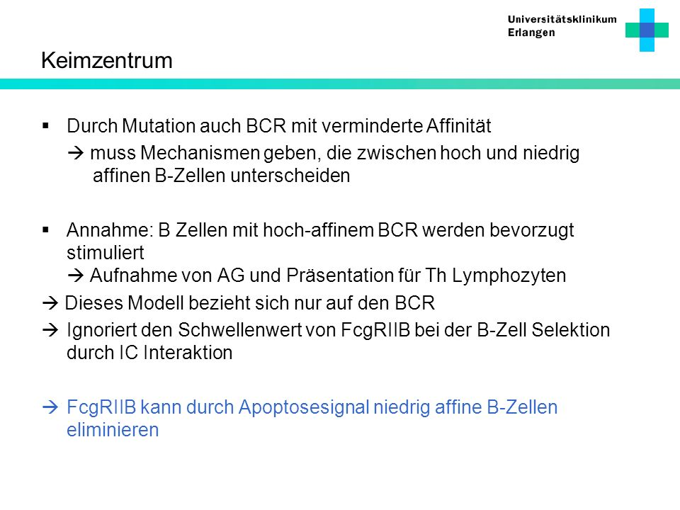 Keimzentrum Durch Mutation auch BCR mit verminderte Affinität