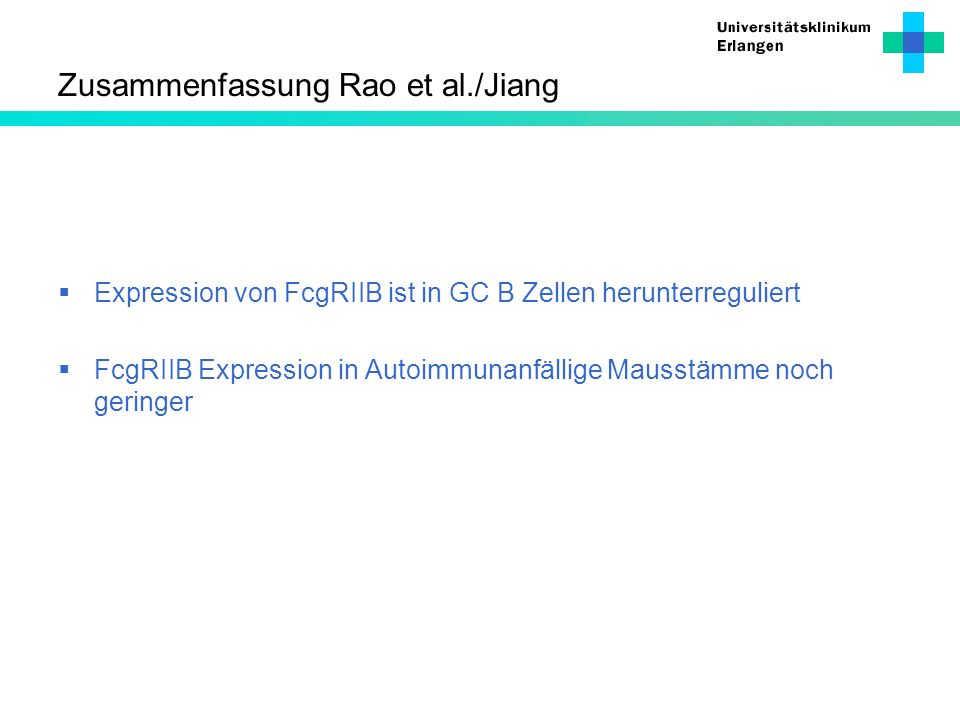 Zusammenfassung Rao et al./Jiang