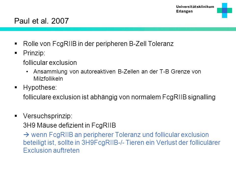 Paul et al. 2007 Rolle von FcgRIIB in der peripheren B-Zell Toleranz