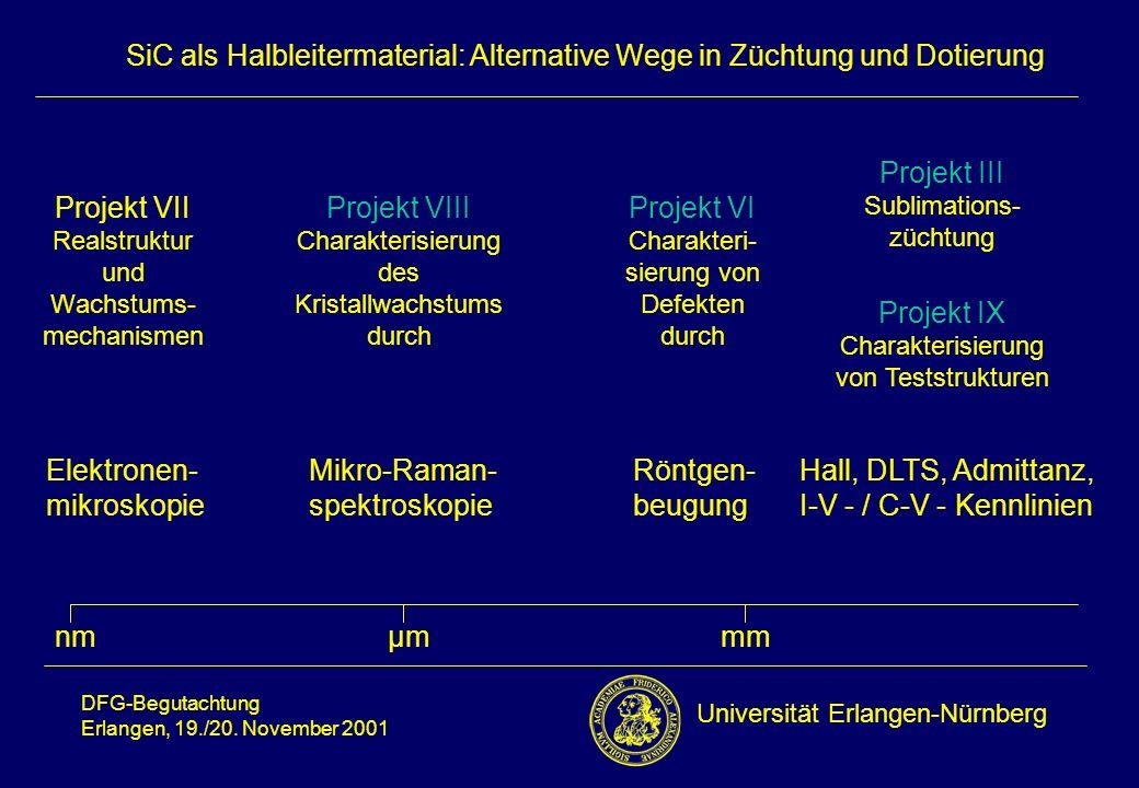 Projekt VII Realstruktur und Wachstums-mechanismen