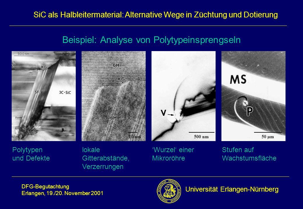 Beispiel: Analyse von Polytypeinsprengseln
