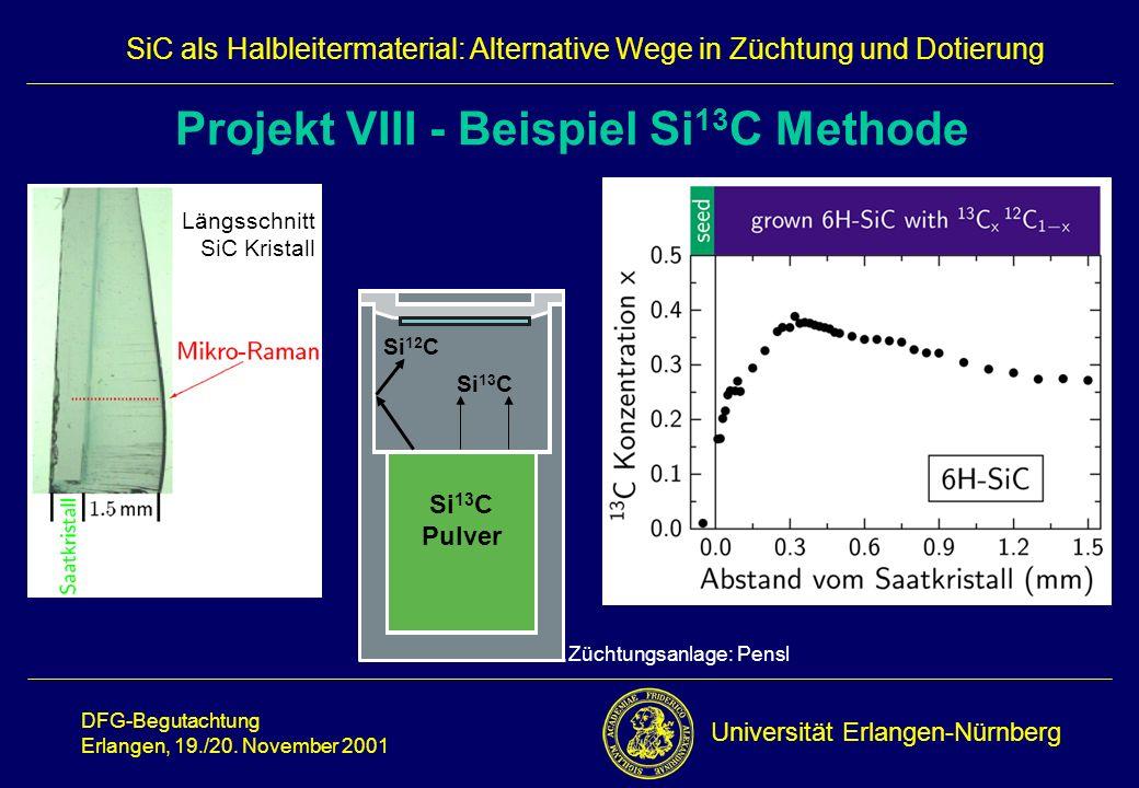 Projekt VIII - Beispiel Si13C Methode