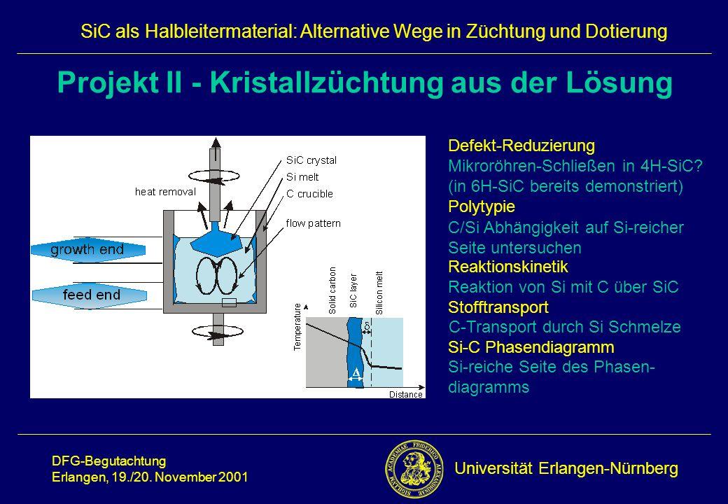 Projekt II - Kristallzüchtung aus der Lösung