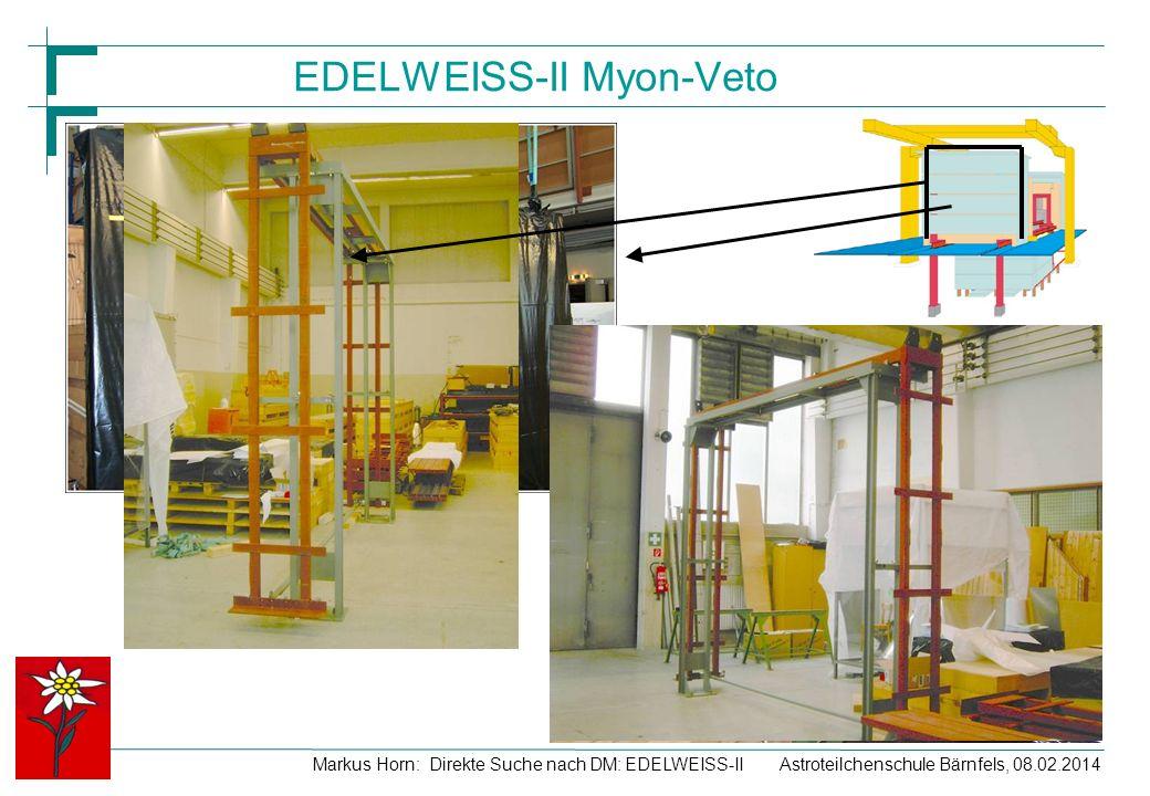EDELWEISS-II Myon-Veto
