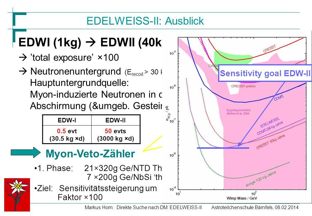 EDELWEISS-II: Ausblick