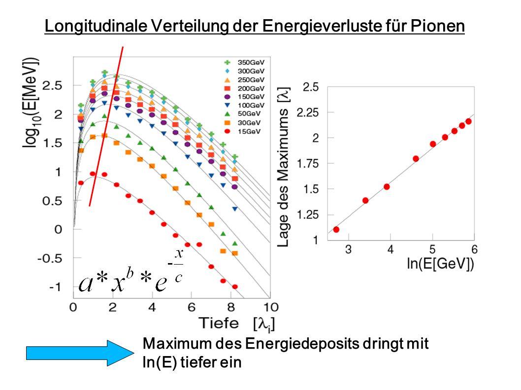 Longitudinale Verteilung der Energieverluste für Pionen