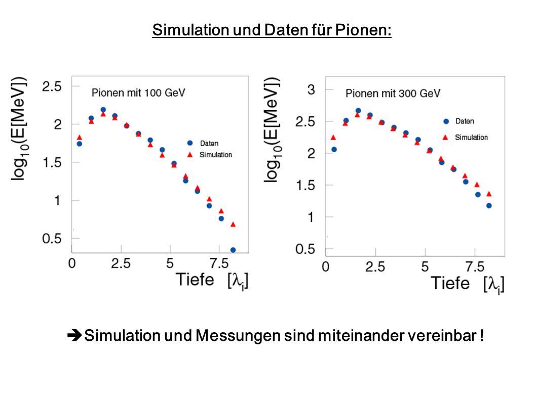 Simulation und Daten für Pionen: