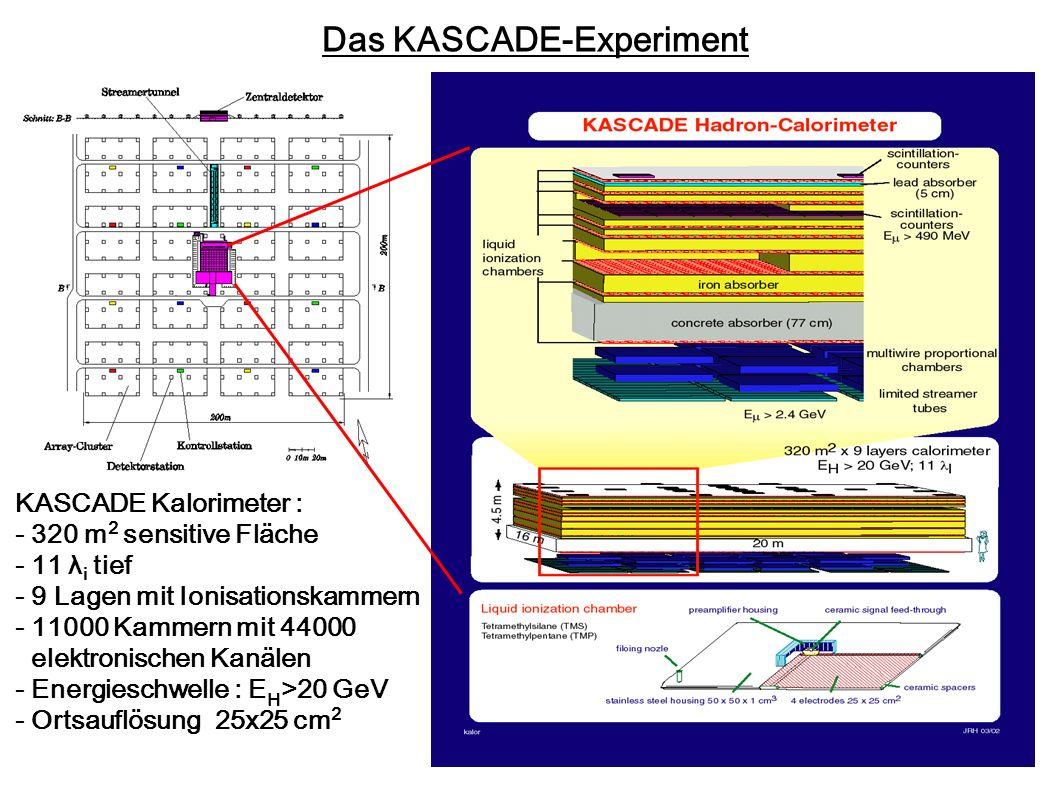 Das KASCADE-Experiment