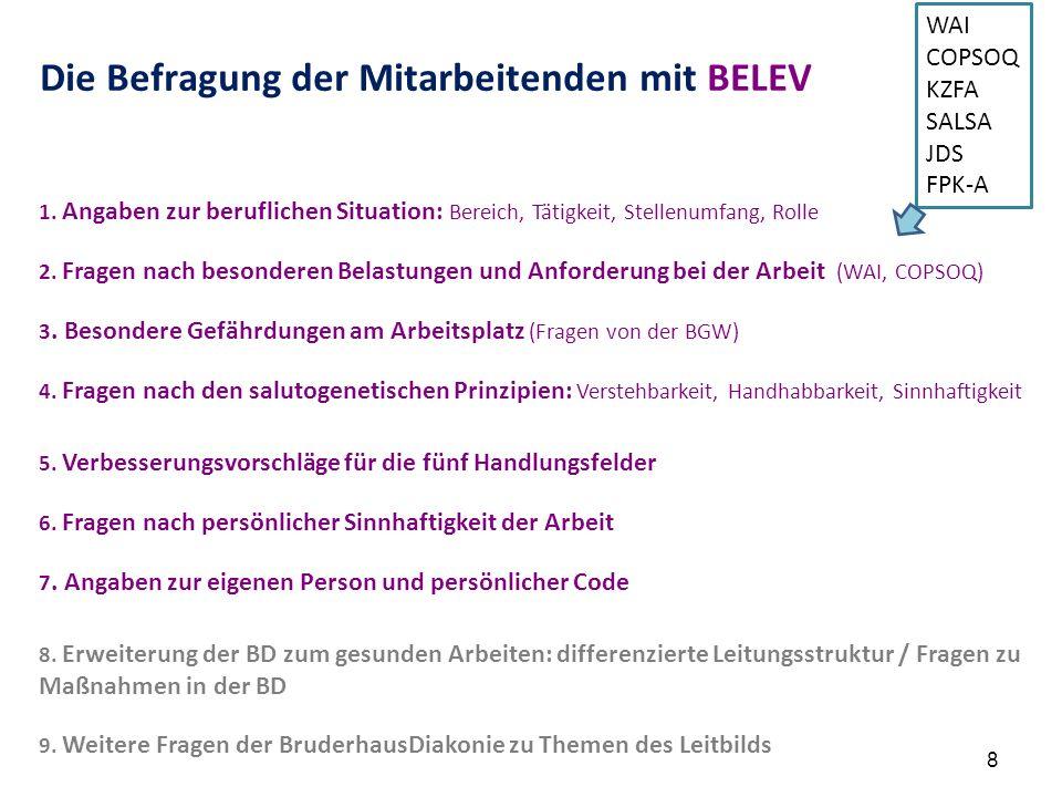 Die Befragung der Mitarbeitenden mit BELEV