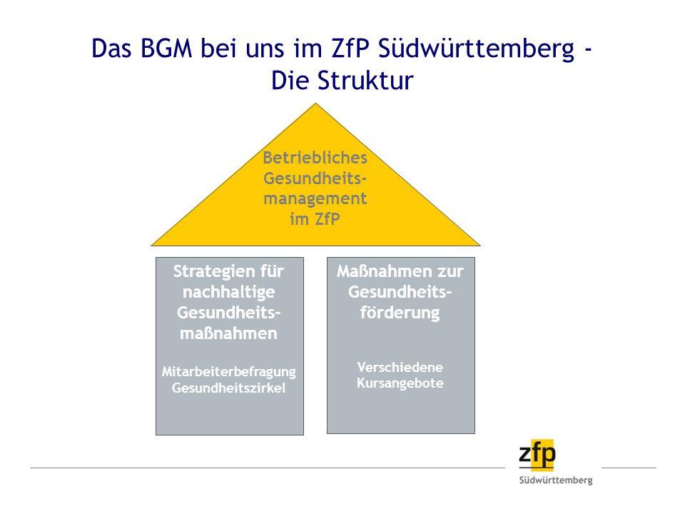 Das BGM bei uns im ZfP Südwürttemberg - Die Struktur