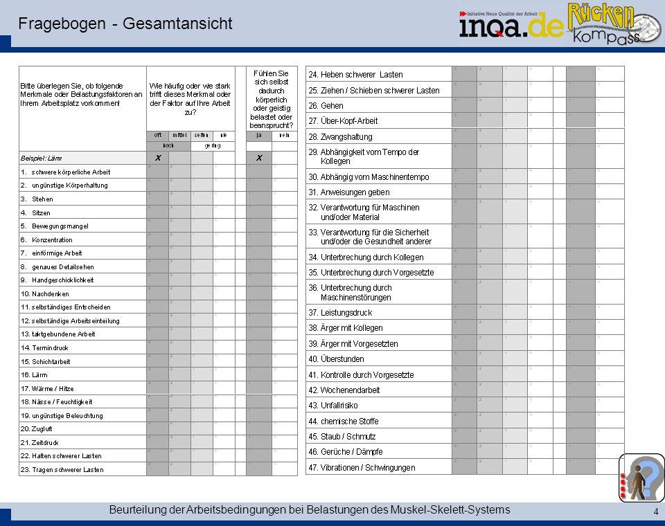 Fragebogen - Gesamtansicht