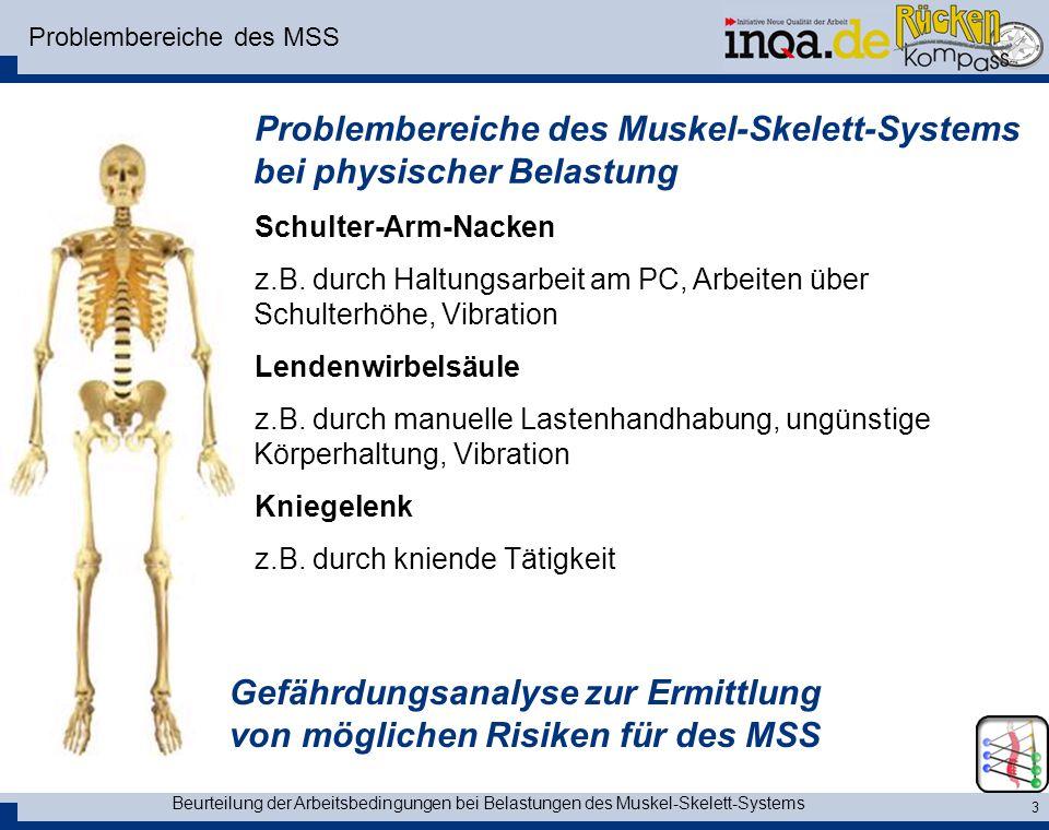 Problembereiche des MSS
