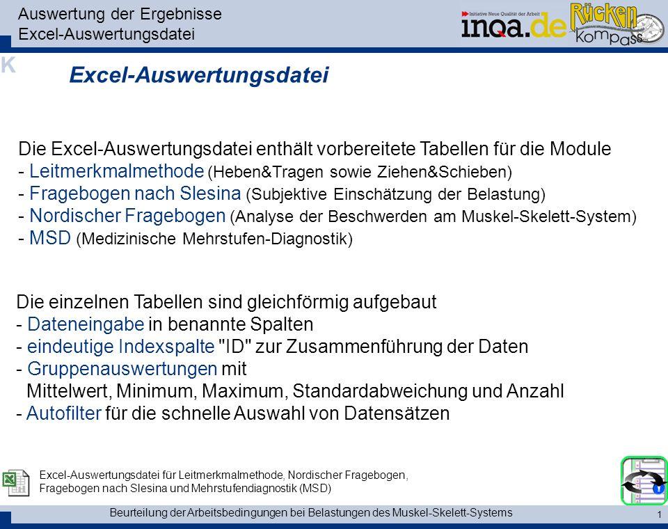 Auswertung der Ergebnisse Excel-Auswertungsdatei