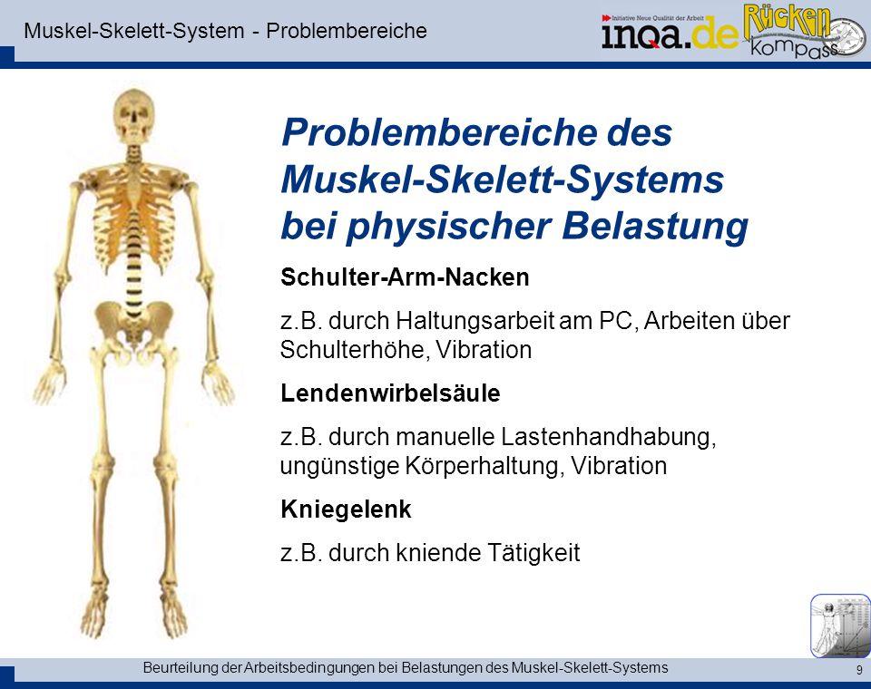 Muskel-Skelett-System - Problembereiche