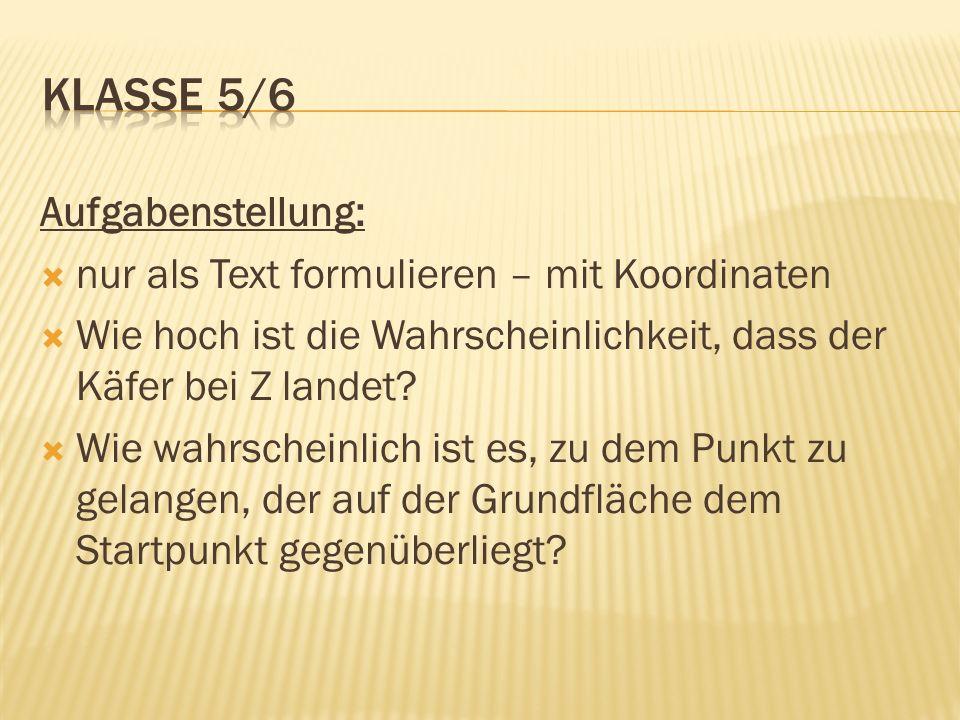 Klasse 5/6 Aufgabenstellung: