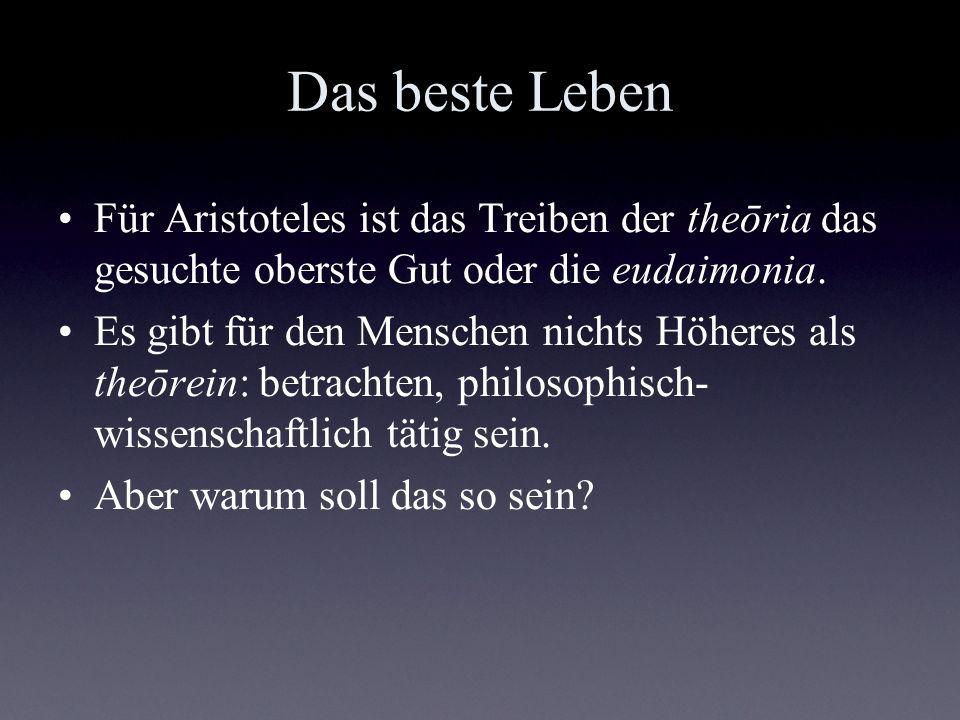 Das beste Leben Für Aristoteles ist das Treiben der theōria das gesuchte oberste Gut oder die eudaimonia.