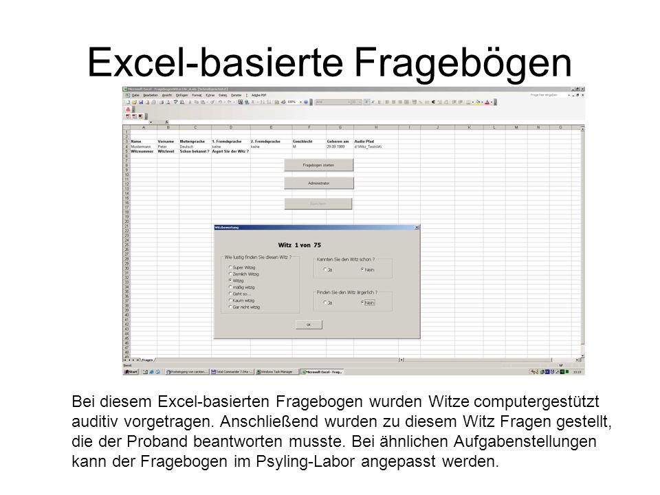 Excel-basierte Fragebögen