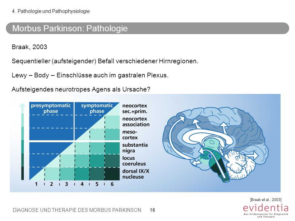 Morbus Parkinson: Pathologie
