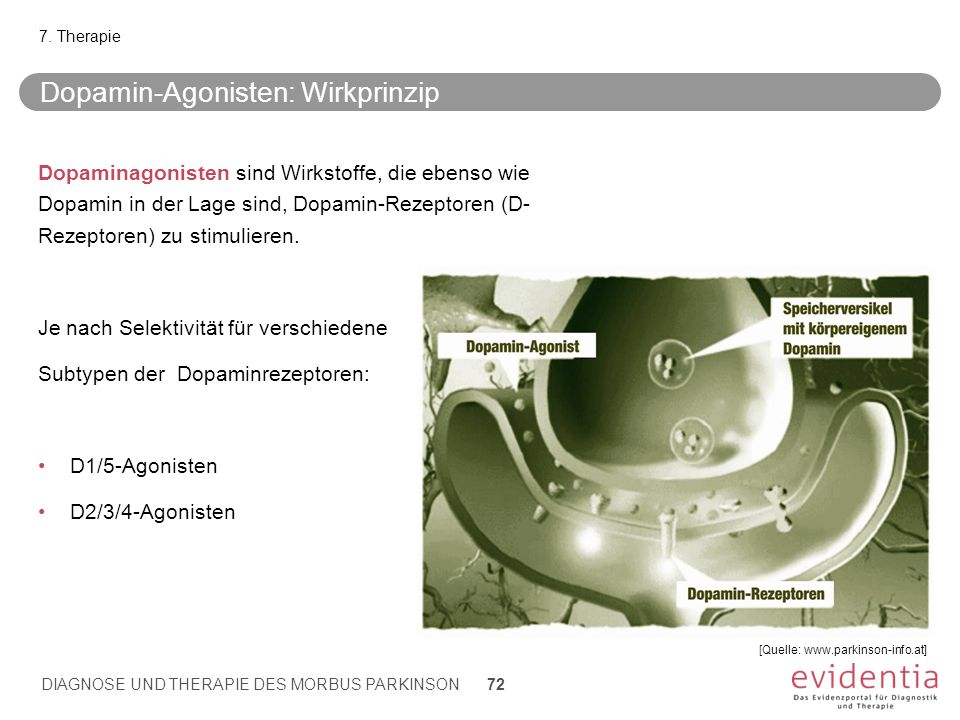 Dopamin-Agonisten: Wirkprinzip