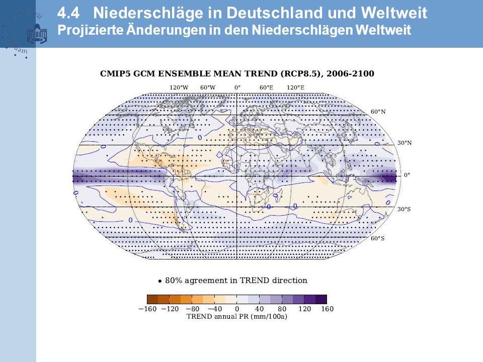 4.4 Niederschläge in Deutschland und Weltweit Projizierte Änderungen in den Niederschlägen Weltweit