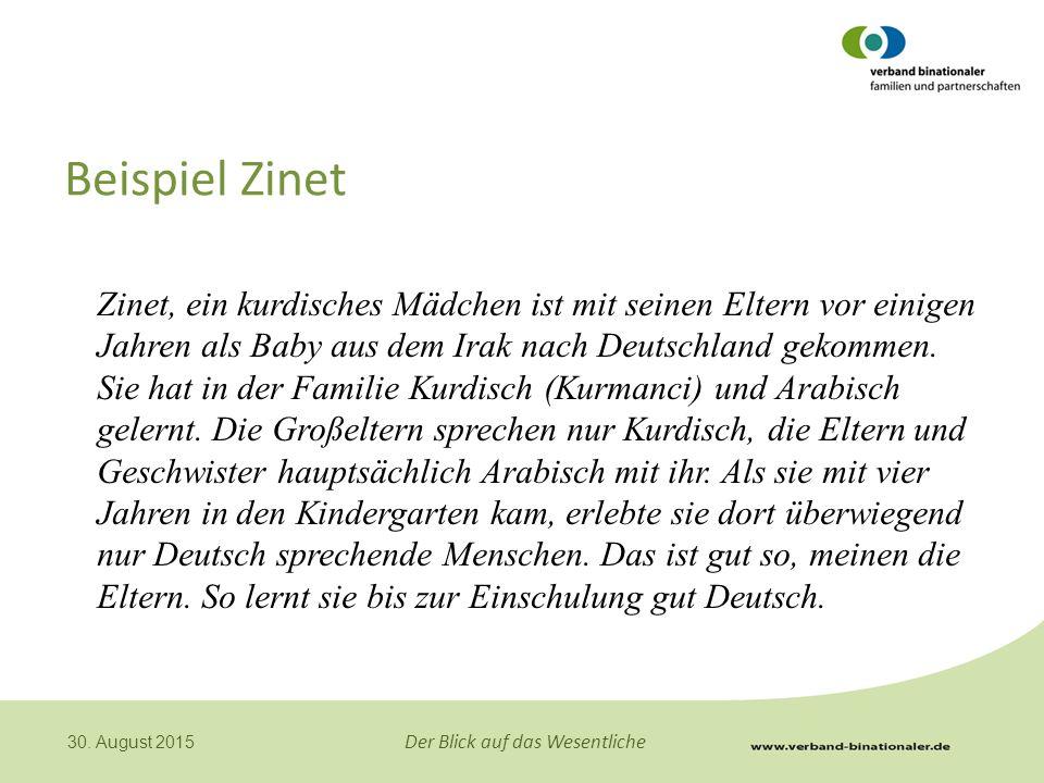 Beispiel Zinet