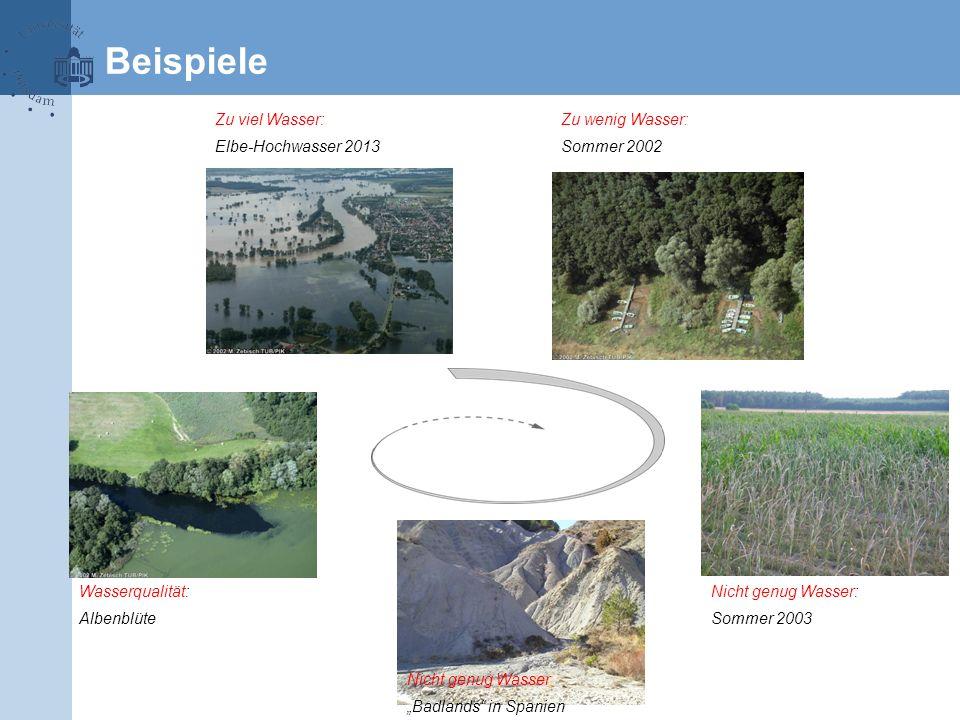 Beispiele Zu viel Wasser: Elbe-Hochwasser 2013 Zu wenig Wasser: