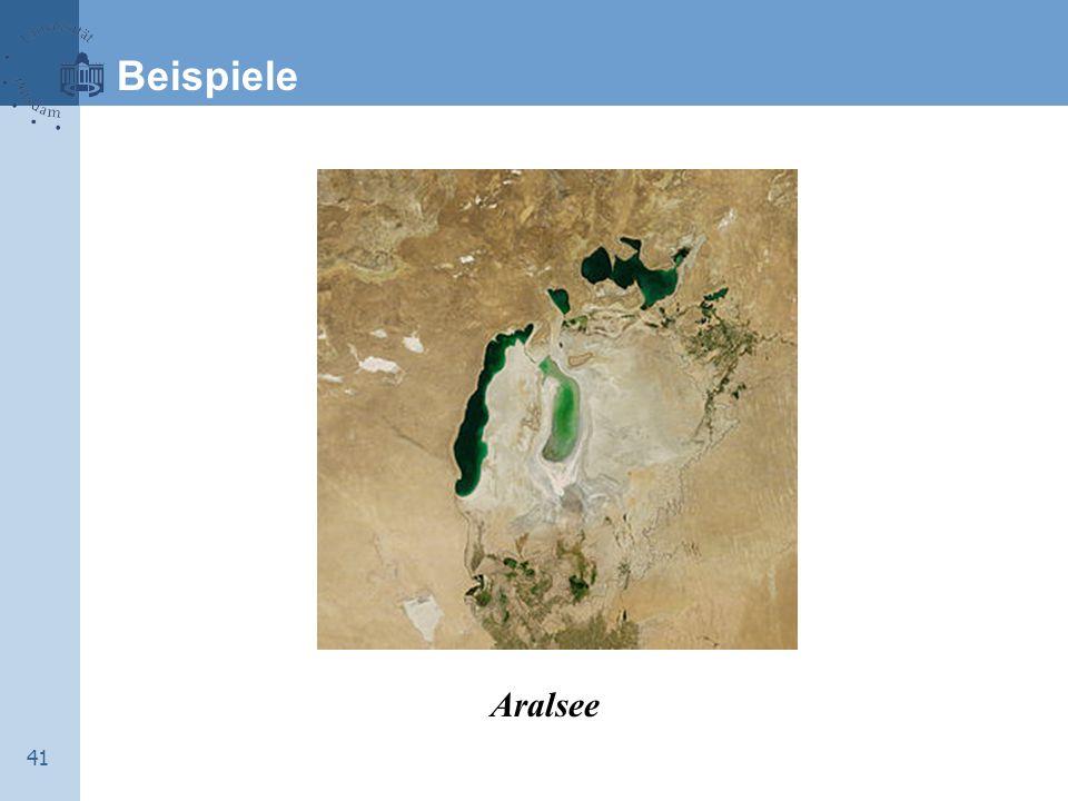 Beispiele Aralsee 41