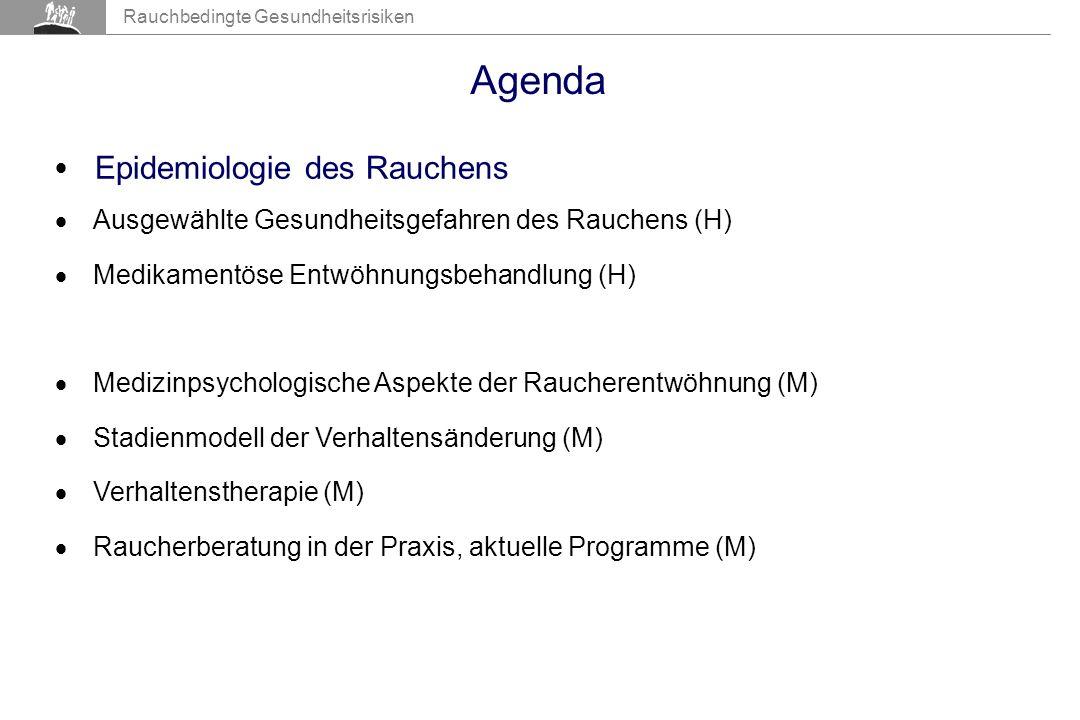 Agenda Epidemiologie des Rauchens Epidemiologie des Rauchens (H)