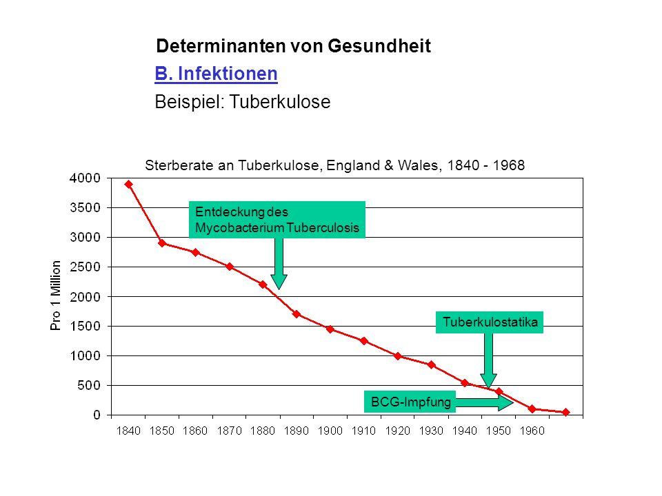 Determinanten von Gesundheit B. Infektionen Beispiel: Tuberkulose