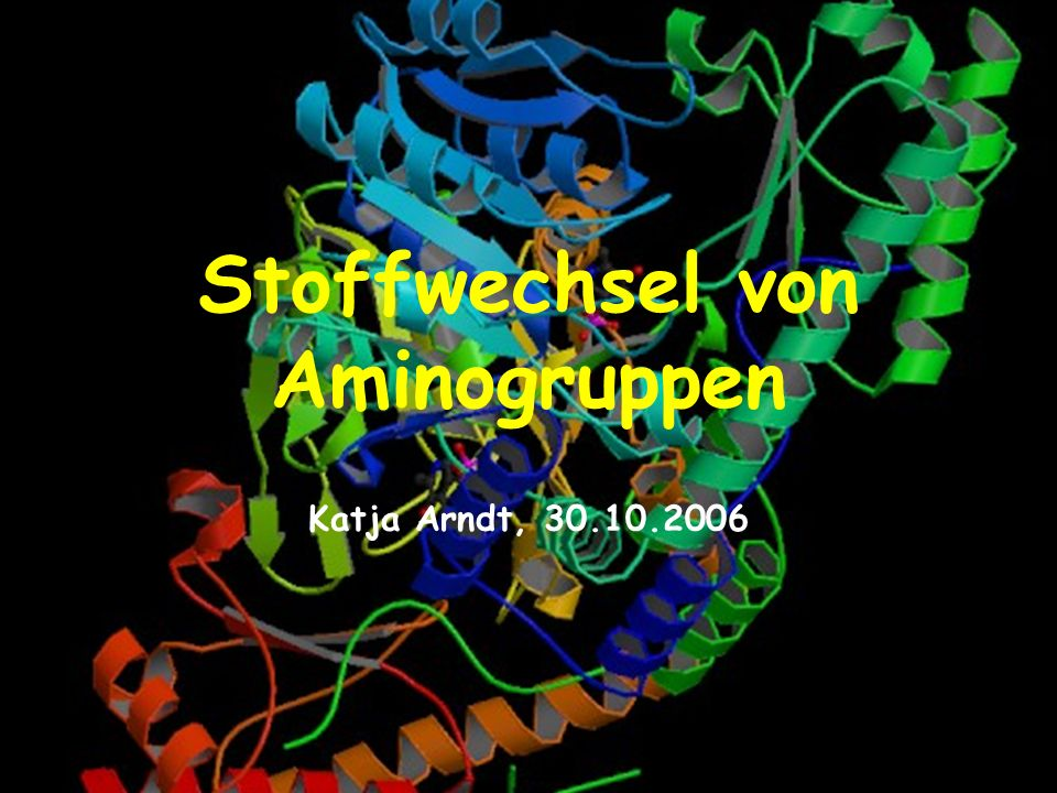 Stoffwechsel von Aminogruppen