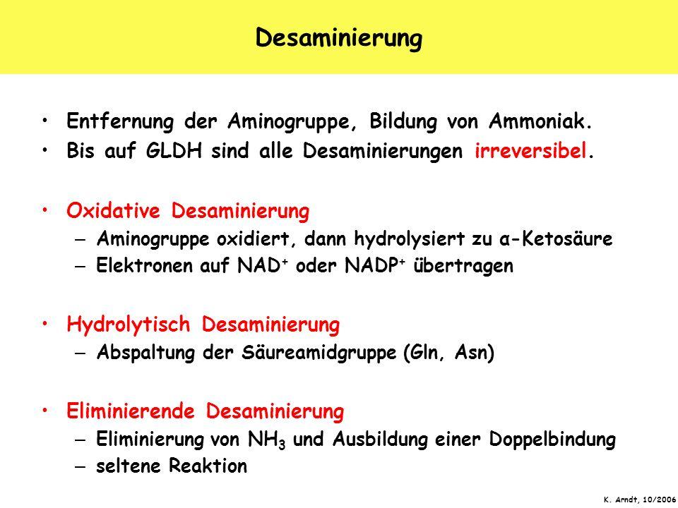 Desaminierung Entfernung der Aminogruppe, Bildung von Ammoniak.