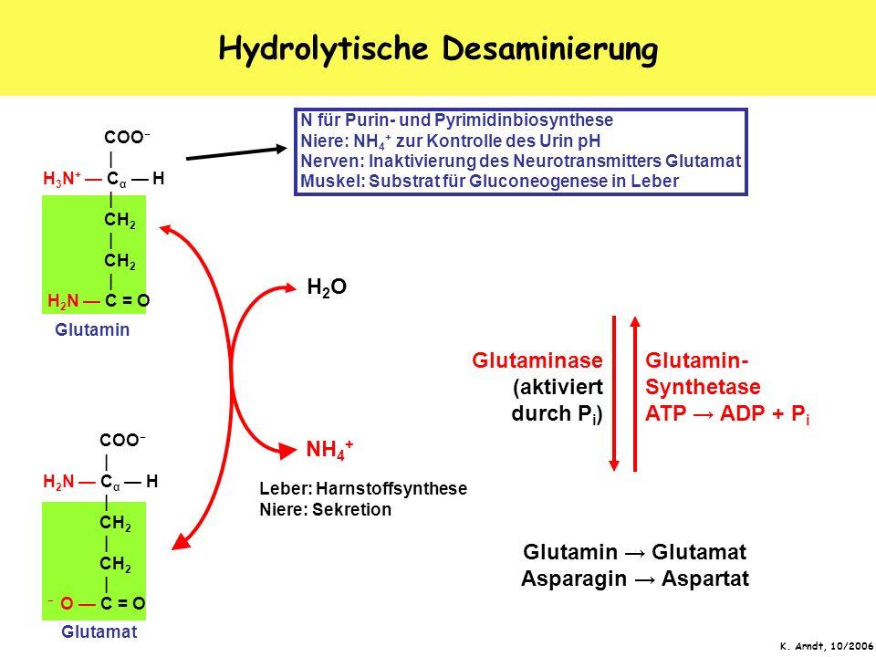 Hydrolytische Desaminierung