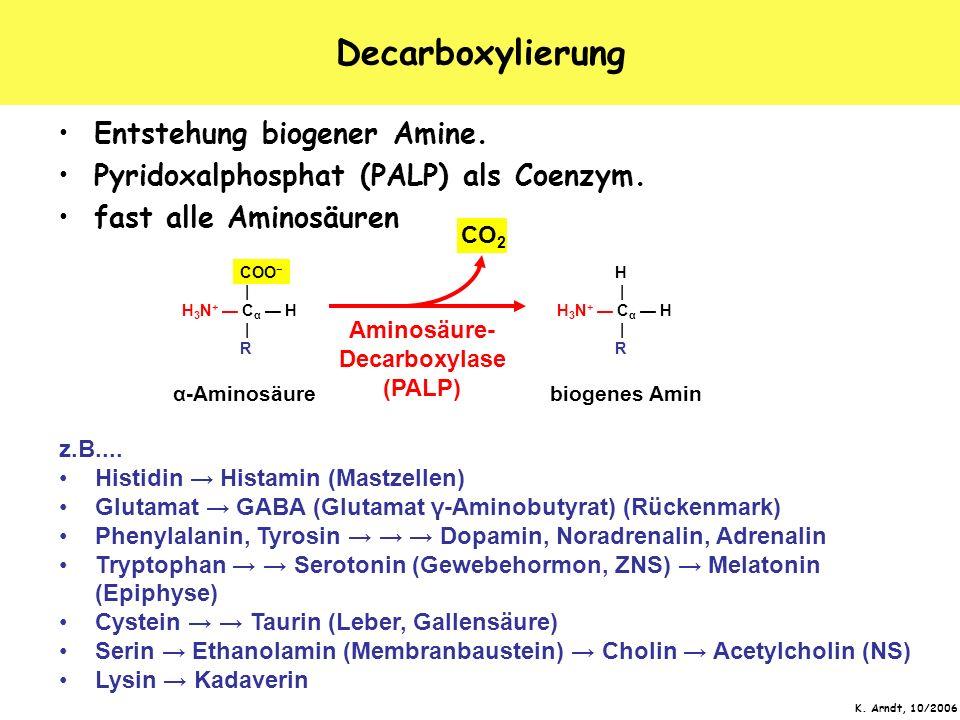 Aminosäure-Decarboxylase