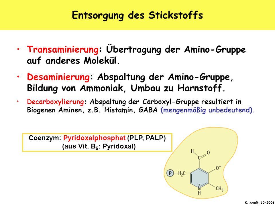 Entsorgung des Stickstoffs