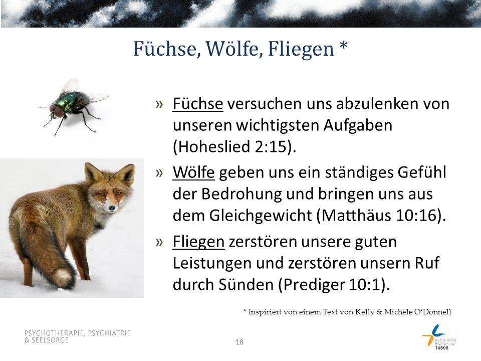 Füchse, Wölfe, Fliegen * Füchse versuchen uns abzulenken von unseren wichtigsten Aufgaben (Hoheslied 2:15).
