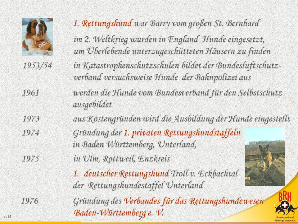 1. Rettungshund war Barry vom großen St. Bernhard