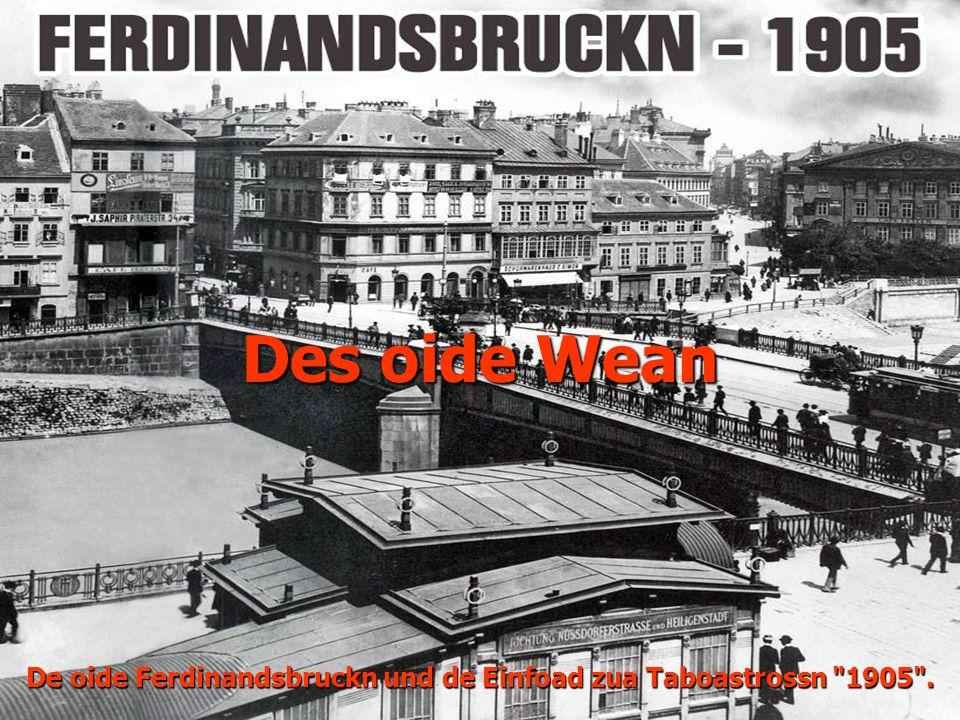 De oide Ferdinandsbruckn und de Einfoad zua Taboastrossn 1905 .