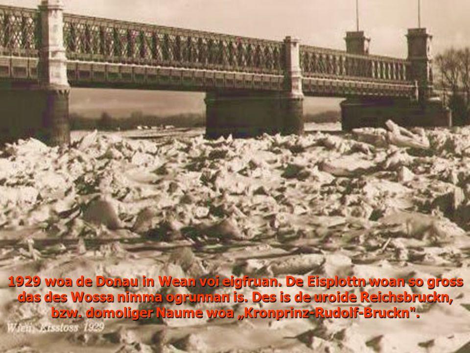 1929 woa de Donau in Wean voi eigfruan