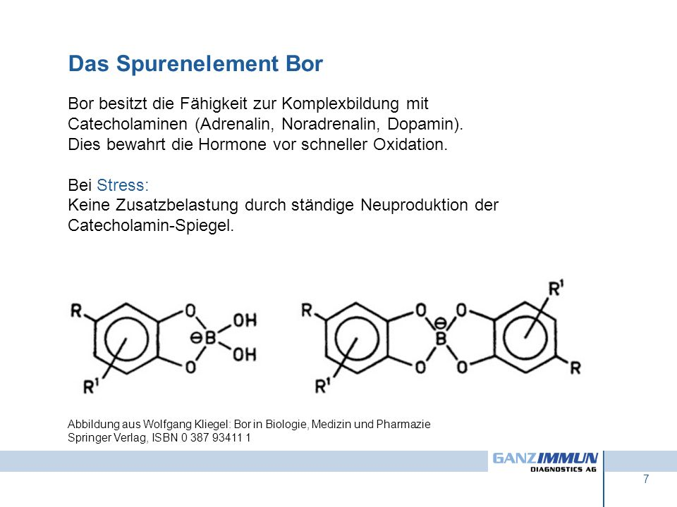 Das Spurenelement BorBor besitzt die Fähigkeit zur Komplexbildung mit Catecholaminen (Adrenalin, Noradrenalin, Dopamin).