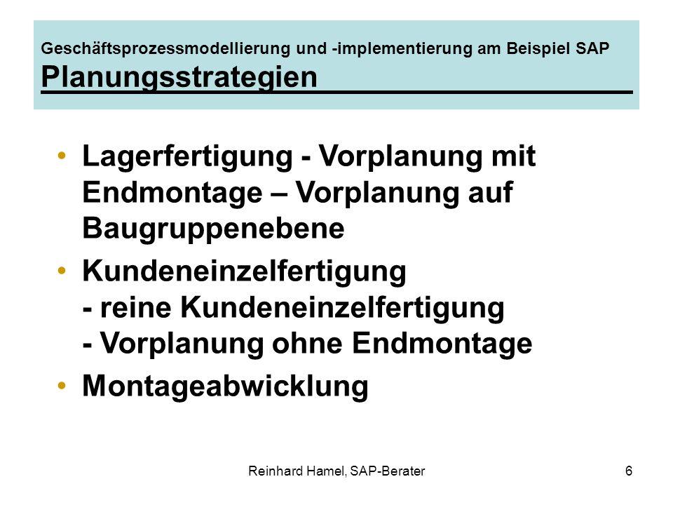 Reinhard Hamel, SAP-Berater